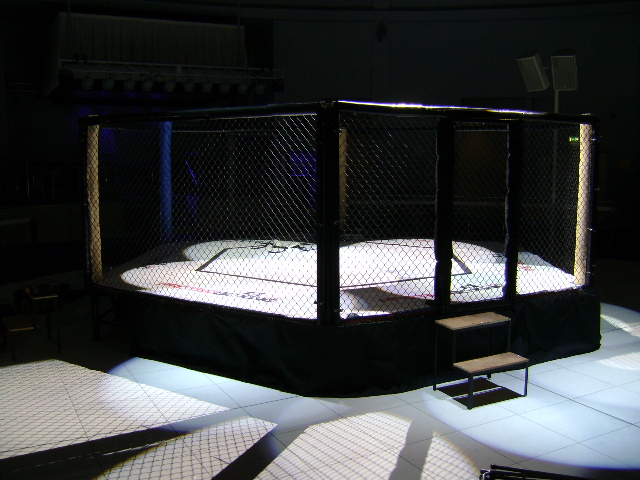 Best MMA documentaries
