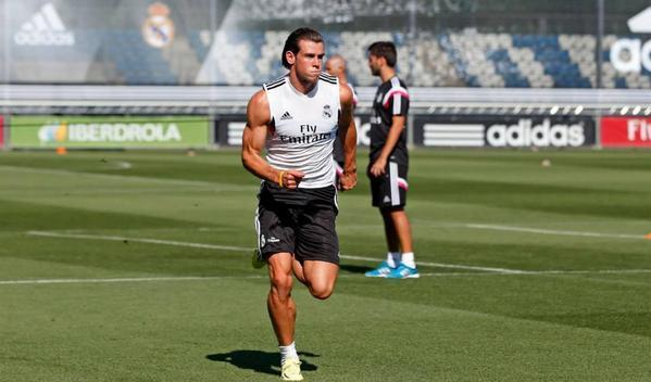 Bale-Muscle