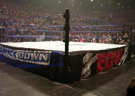 Page 6 Secrets Of The Wwe Ring And Weapons You Must Know