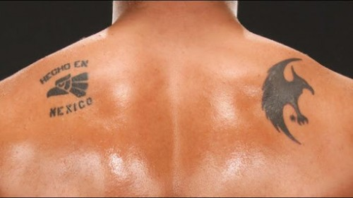 Top 10 Coolest Wwe Tattoos