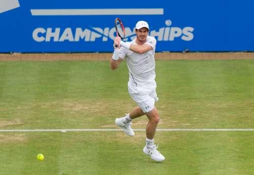 Andy Murray Queens
