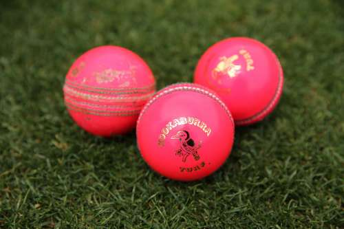Pink ball cricket Pakistan