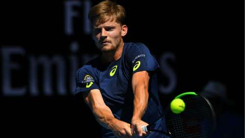 goffin - CROPPED