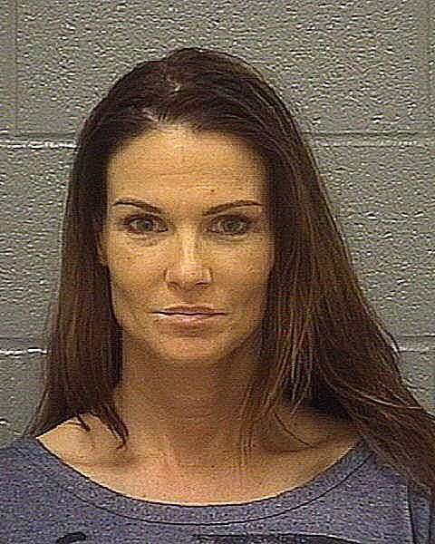 WWE News WWE Diva Kaitlyn Arrested at Live Event