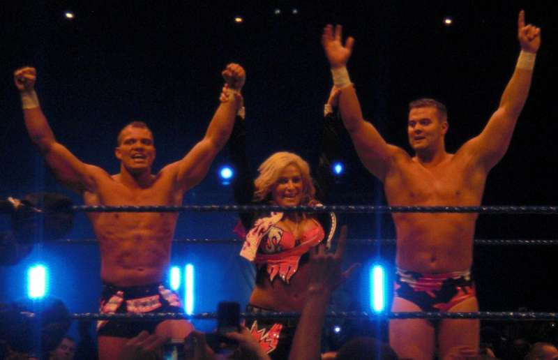 the world championship wrestling as a provider of entertainment